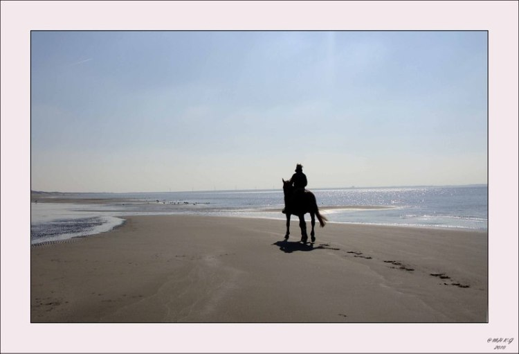 Zand_voor_strand_15_a