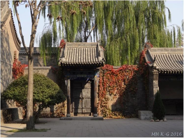 china 208 wp