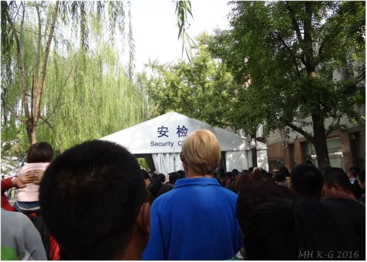 china 220c wp