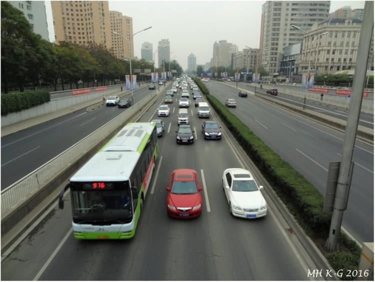 china 230 wp